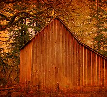 Old Brown Barn by aussiedi