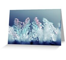 Frosty Land Greeting Card