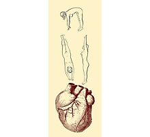 Illustration of Heart Pumping Photographic Print