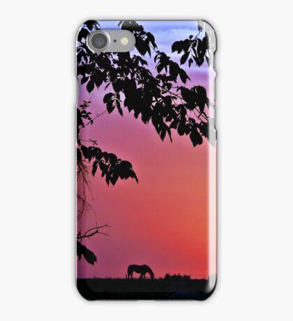 Sunset Serenity iPhone Case/Skin