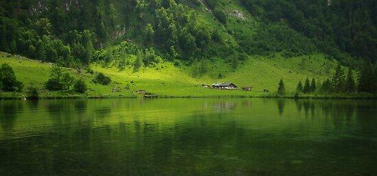 Green World by Béla Török