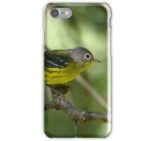 Magnolia Warbler iPhone Case/Skin