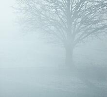 Winter tree by Lena Weiss