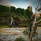 Mill near Buckley Falls by Andrew (ark photograhy art)