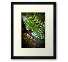Old Cistern at Fort Monroe Framed Print