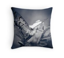 ...i don't know much but i know this for certain... Throw Pillow