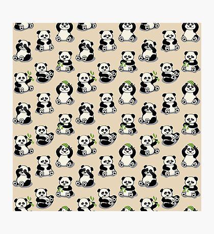 Pandas Photographic Print