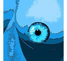 Fish eye?? Photographic Print