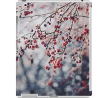 That temporary land of Winter. iPad Case/Skin
