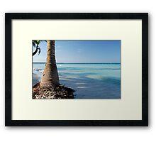 Jamaican Beach Framed Print