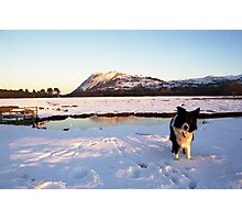 Indy The Snowman Photographic Print