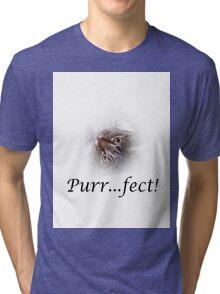 Cute Tabby Cat Purr...fect!  Tri-blend T-Shirt