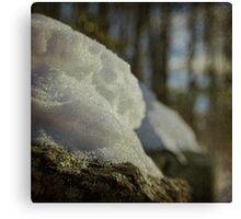 Winter Bokeh Canvas Print