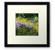 Sunshine Blossoms Framed Print