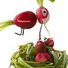Radish Cardinal by Vanessa Dualib