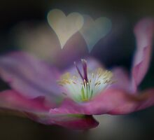 Sweet Hearts by Jacky Parker