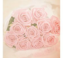 Roses are pink my love Photographic Print