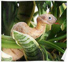Cassava Snake Poster