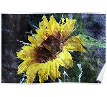Sunflower Mist Poster
