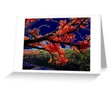 Autumn Colours Greeting Card