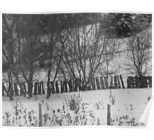 Hillside and Fences- B&W Poster