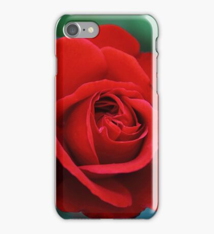 Everyone loves a beautiful Rose iPhone Case/Skin