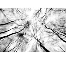 Winter Winds Photographic Print