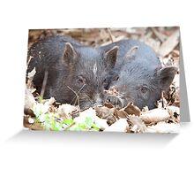 Resting Siblings  Greeting Card