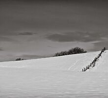 Slices of winter # 7 by clickinhistory
