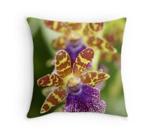 """So Unique -Conservatory Orchid"" Throw Pillow"