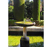 Fountain of the Alcazar Photographic Print