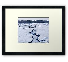 Cold Raw Nature Framed Print