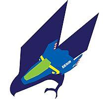 Blue Falcon Emblem Photographic Print
