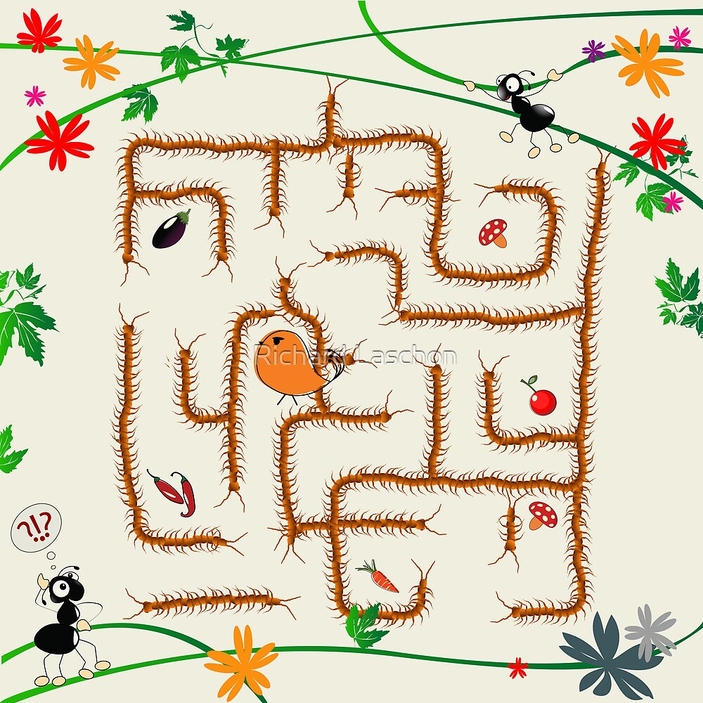 Complicated maze by Richard Laschon