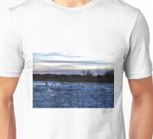 Buckhorn Pond Before Dawn Unisex T-Shirt