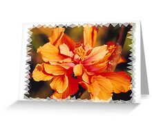 Orange hybiscus Greeting Card