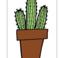 Cute Little Cactus - Tumblr Sticker