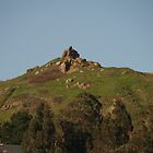 Corona Heights by Linda Scott