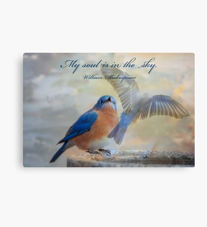 My soul is in the sky . . . Canvas Print