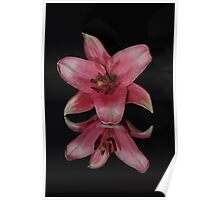 lily mirror Poster