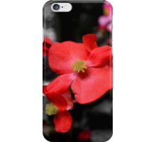 Red Wax Begonia iPhone Case/Skin