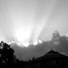 Sun rays by nerh
