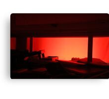 Red Ring Canvas Print