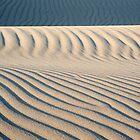 Dunes at Nipomo by bouldercreek