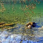 """Rocks and Reflections"" by Lynn Bawden"