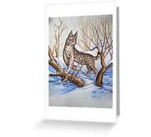 Trapped Bobcat Greeting Card