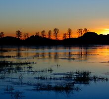 Sunset Over the Slough by DThiessen