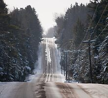 Brookdale Road In The Winter by Gary Chapple