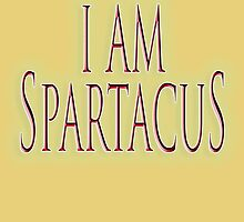 SPARTACUS, I am Spartacus! No I am Spartacus! Blood & Sand, Gladiators, Coliseum, Combat, Death by TOM HILL - Designer