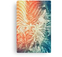 Fearn and Fireweed 02 - Retro Canvas Print